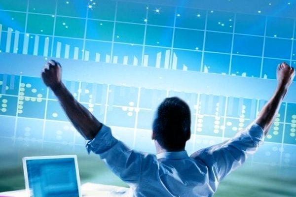 Профессиональные участники рынка ценных бумаг